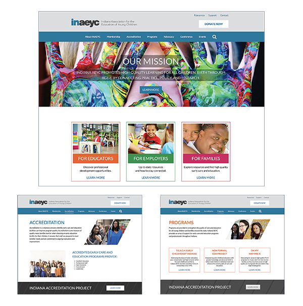INAEYC web site case study